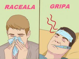 raceala vs gripa